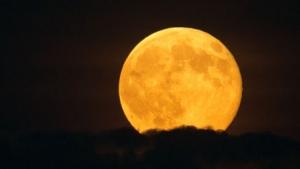 Super Lune (galerie)
